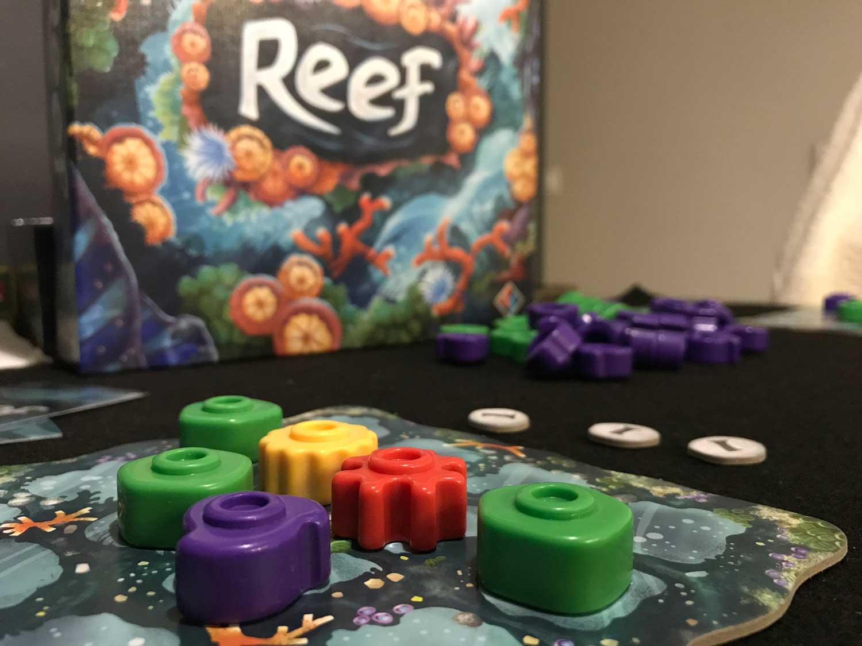 Reef, un arrecife de coral en tu mesa